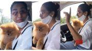 Artist Surekha Vani Driving Car With Her Dog Krishna (Video)