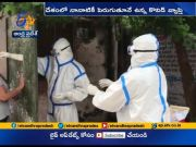 CoronaVirus Cases Cross 51 Lakhs In India; Death Toll is at 83,121  (Video)