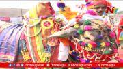 NTV: Sankranti celebrations begin in Telugu states (Video)