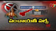 NTV: Special Report on AP Panchayat Election 2021 Results (Video)