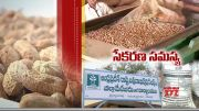 Collecting of Groundnut Seeds @ Anantapur Dist | Agriculture Dept Focus on Buy from Farmers  (Video)
