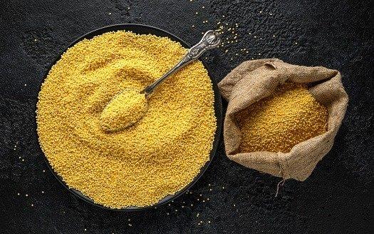 New disease in millet crop in Haryana identified