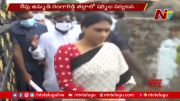 NTV: YS Sharmila To Visit Rangareddy District Tomorrow On Farmers Issues (Video)
