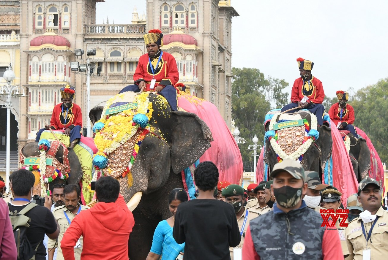 Bengaluru: Elephants were offered a ceremonial welcome on their arrival to participate in the Dasara celebrations at Mysuru Palace - in Bengaluru. #Gallery