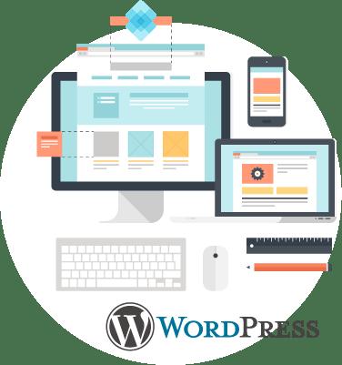 Wordpress web design firm in rosevilee illustration