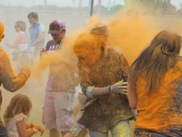 Brownstock Paint Fight
