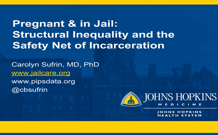 Pregnant and in Jail: Structural Inequality and the Safety Net of Incarceration