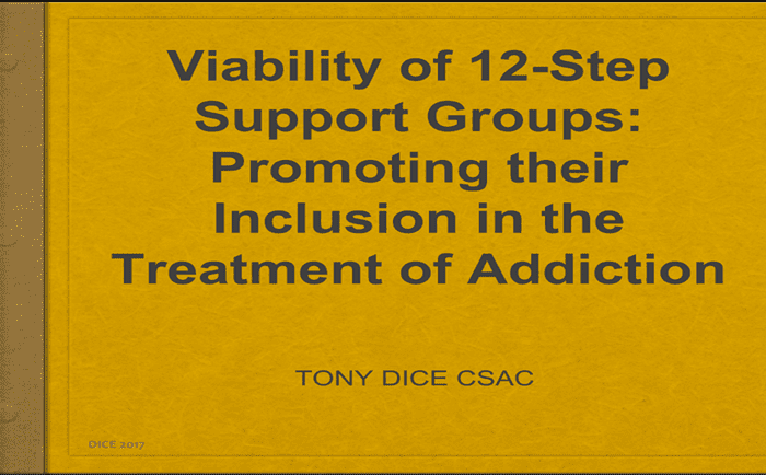 The Viability of 12 Step Support Groups