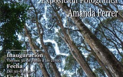 Momentos que Inspiran. Exposición fotográfica de Amanda Ferrer. Viernes 30 de Junio.