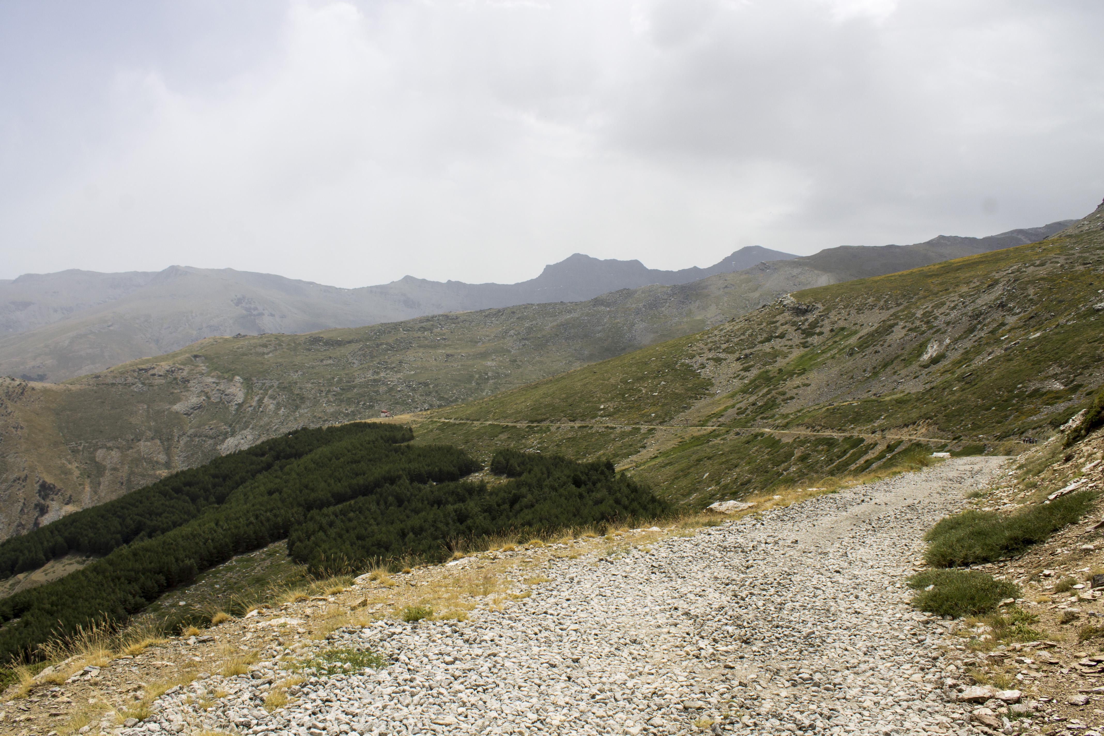 Albergue San Francisco _ Llanos de Otero