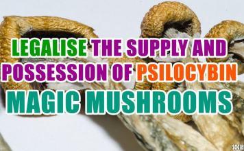 Legalise the supply and possession of psilocybin ('magic') mushrooms
