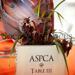 ASPCA Table
