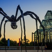 Museums are fascinating - ranging from animals and nature, to science and technology, and everything else in between. Here are 5 must see museums in Ottawa.