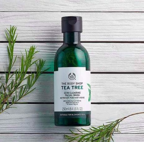 This is one of my favorite products from the Body Shop Tea Tree Oil collection!