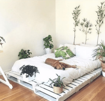 University life can be oh so stressful. These tips will help you to transform your dorm room into the ultimate zen den to find some relax!