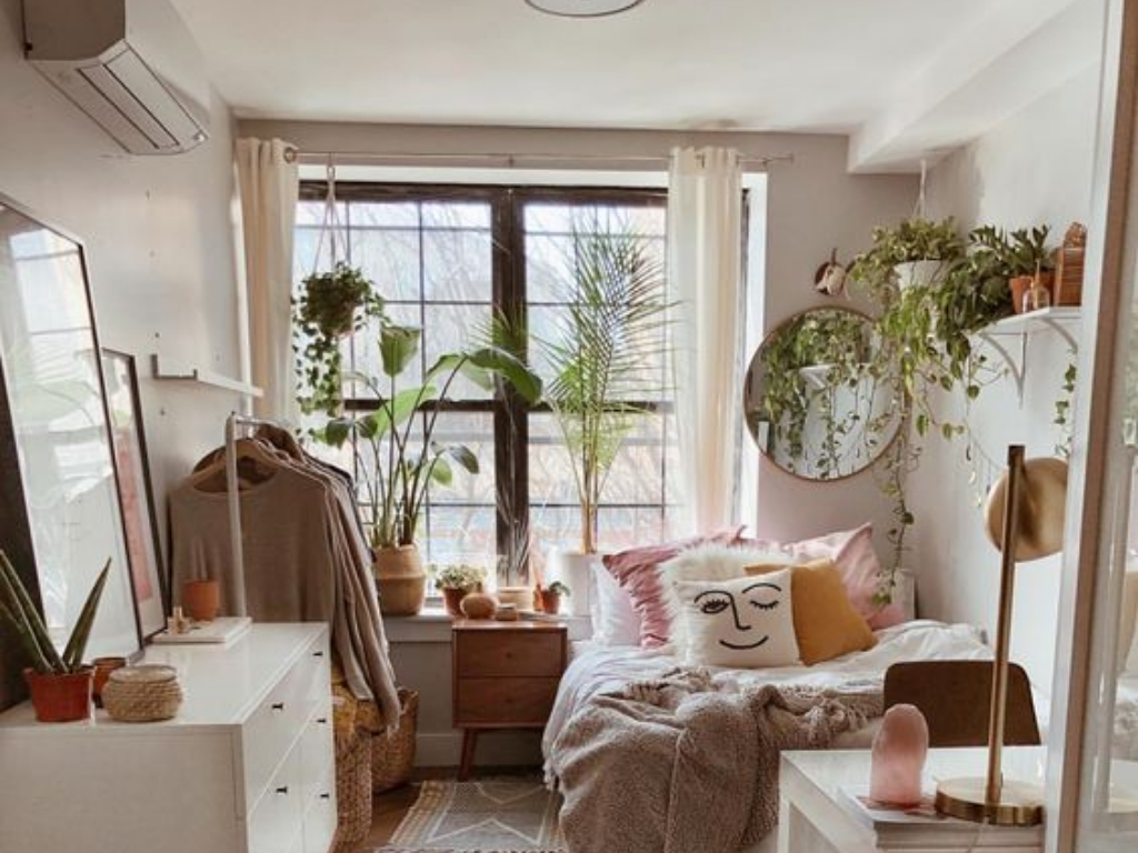 Easy Indoor Plants That Brighten Up Your Dorm Room