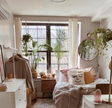 Easy Indoor Plants That Brighten Up Your Dorm Room