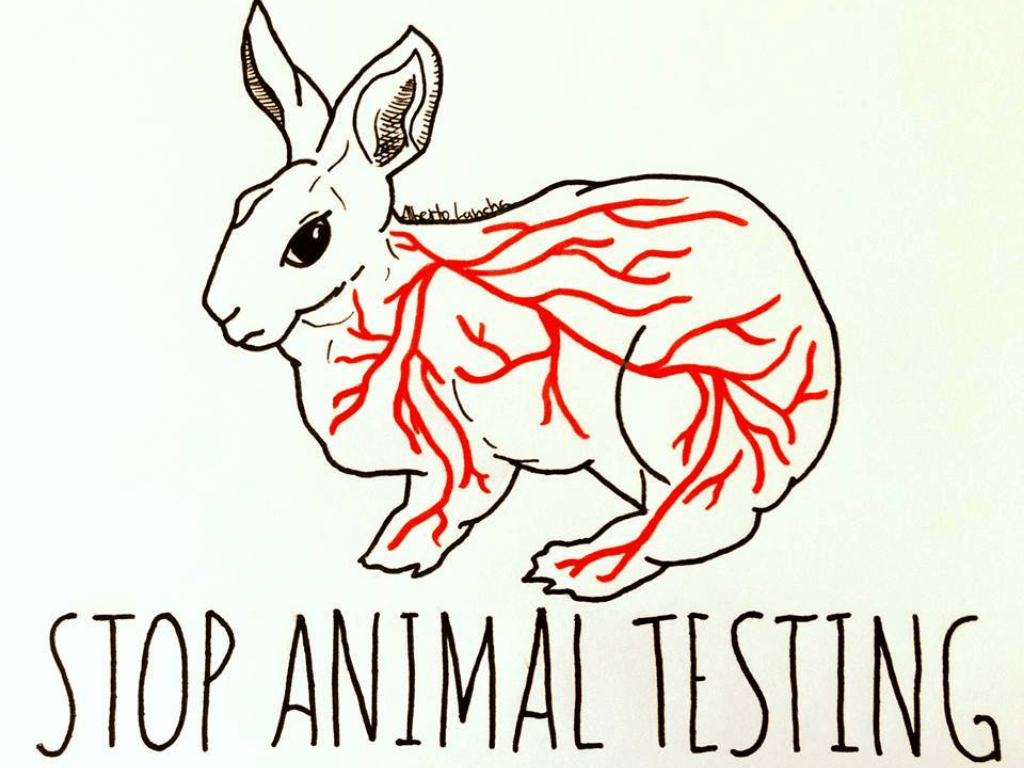 10 Cruelty-free Make Up Brands You Should Support