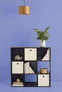 What You'll Need in Your First Apartment: Target Room Essentials 9 Cube Organizer