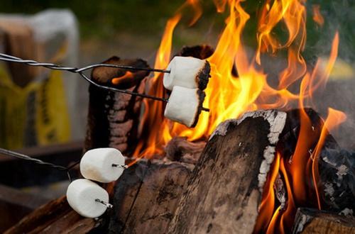 have a bonfire!