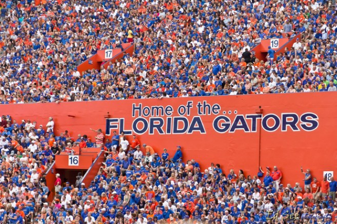 6 Fun Things To Do in Gainesville Near UF