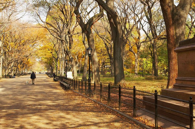 Autumn is the greatest time of the year, especially in New York City. Here are ten reasons why nothing beats the fall at SJU!