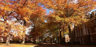Maybe it's the crunchy leaves or the smell, but there is not a doubt that fall at OU is special.Here are a few reasons why to love Ohio University in fall.