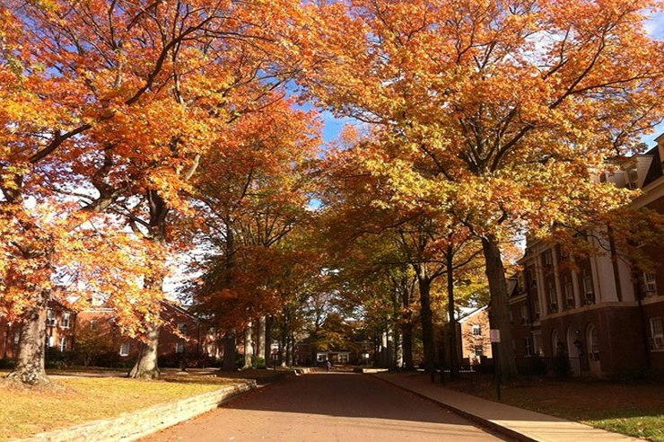 Maybe it's the crunchy leaves or the smell, but there is not a doubt that fall at OU is special. Here are a few reasons why to love Ohio University in fall.