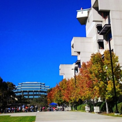 Isn't Warren Mall gorgeous during fall at UCSD?