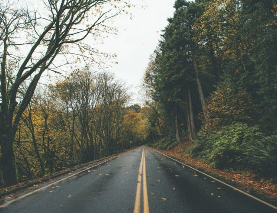 Here are 7 fall road trips in upstate New York thatSUNY Plattsburgh students can take before we are all cooped up in our rooms for the winter!