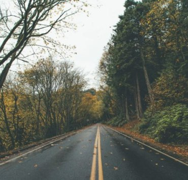 Keep reading for 10 fall road trips to take around Kent!Everything is within an hour drive, and has tons of beautiful views!
