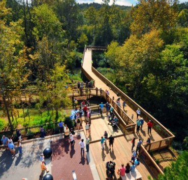 10 Free Things To Do Around The University Of North Carolina At Chapel Hill