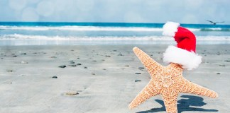 If you know someone who is obsessed with the beach, be sure to check out this list full of perfect summertime-inspired gifts!