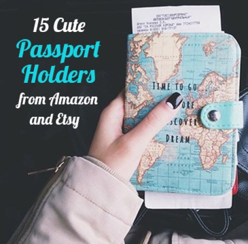 These cute passport holders from amazon and etsy are to die for!