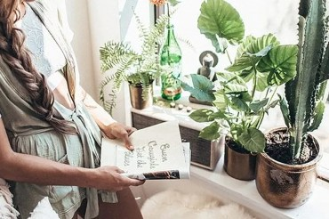 Decorative plants are a great way of adding some decor to your dorm room! These are simple tips and tricks for adding plants into your dorm decor!
