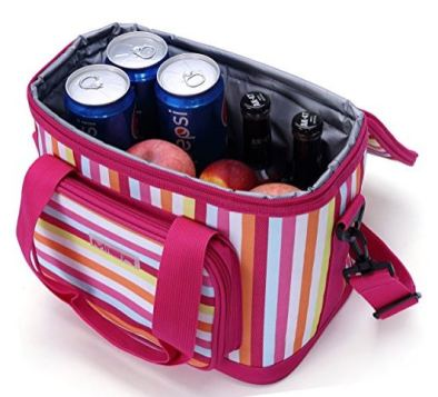 A cute cooler! Maybe not one of my beauty essentials, but definitely a style bonus.