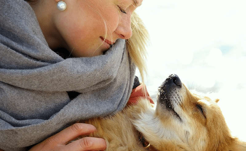 College takes a toll when you live with depression or anxiety. If you can relate, check out 7 benefits of having an emotional support animal in college.