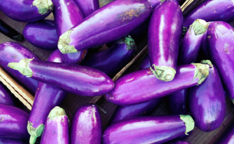Sending dick pics has been a trend for a long time, but it's time for it to come to a stop. Ladies are here to tell you why sending dick pics needs to be banned IMMEDIATELY.
