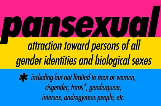 What Does It Mean To Be Pansexual Janelle Mone Comes Out -1837