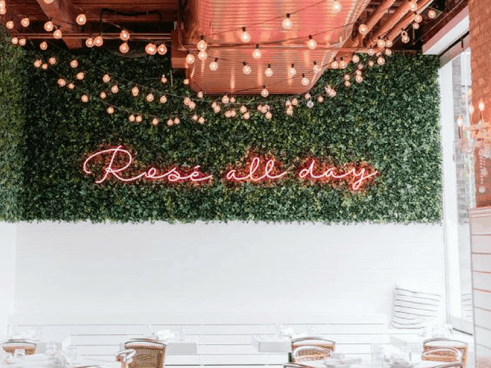 Cool off from the summer heat in the evening with a glass of rosé! Society19 knows the best places in Cville to get the drink and enjoy some great food!