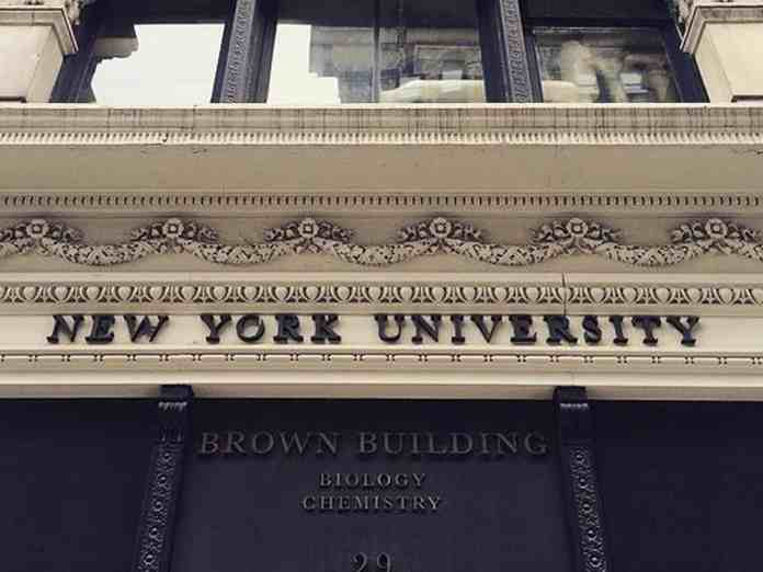 5 Reasons I'm Excited To Start At New York University