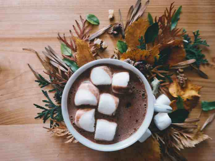 These non-alcoholic fall drink recipes will give your tastebuds the experience they're looking for this autumn! Which is your favorite?
