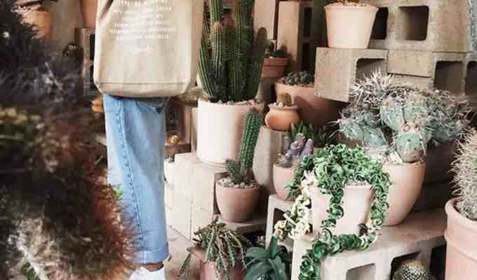 These gifts for gardeners make the best Christmas or birthday presents! If you're looking for some plant related gift ideas, then check out these favorites!