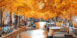 These fall travel destinations are some of the best places you can go to see the foliage or to take a break from the cold this autumn!