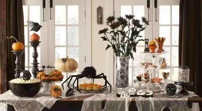 These Halloween decor ideas are great for anyone on a budget! They'll have your place looking spooky and creative this October!
