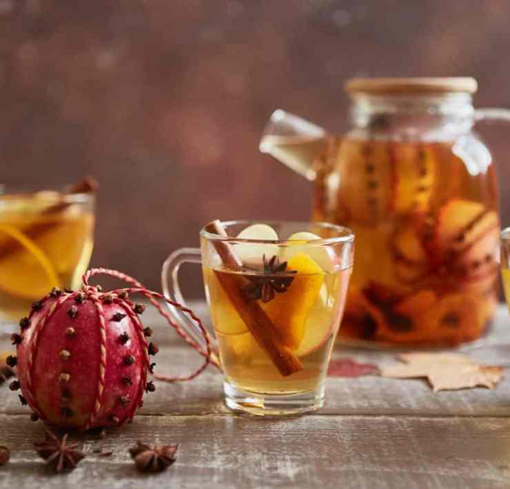 These alcoholic winter drink recipes are perfect for a chilly night in during those long winter nights. Here are some of our favorites!