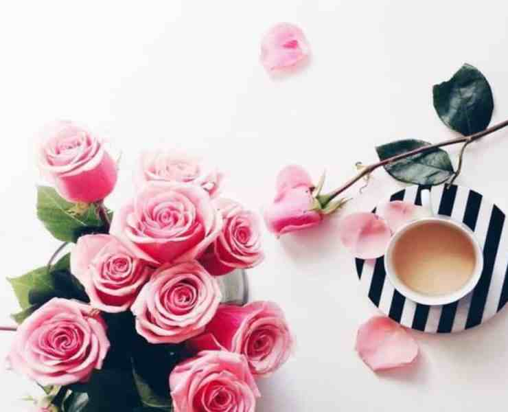 The prettiest flower bouquets have been gathered together for the perfect Valentine's Day. Check them out for your own inspiration this year.