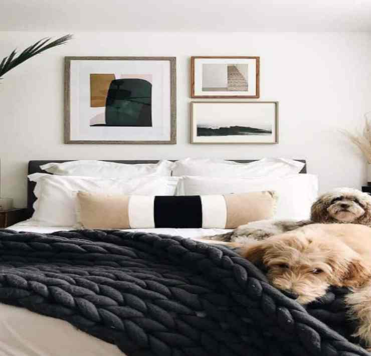 Moving into a new apartment is an exciting and stressful time, especially if it's your first. Have fun picking out your decor for your new place!