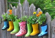 10 Small Gardening Ideas To Bring Life To Your Yard