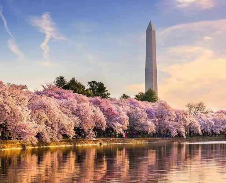 Washington DC: A Tourists Guide